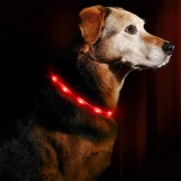 USB Rechargeable Loop Water Resistant Light Up Dog Collar for Night Safety