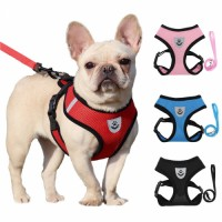 Premium Quality Private Label Dog Leashes and Chest Harness Soft Breathable Nylon Mesh Dog Collar and Leash Set