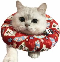 Protection Cone Neck Recovery Collar Animal Pets Elizabethan Collar Anti-Water Bite Sratch Resistant