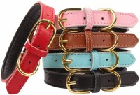 Basic classic thick leather pet collar suitable for cats, dogs, small and medium-sized dogs