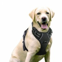 Fashion dog harness no pull reflective Soft Mesh Padded Adjustable pet harness Reflective Vest Harness