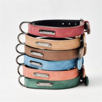 Pet Collars Dog Collars Traction Collars Collars Adjustable for medium and large dogs