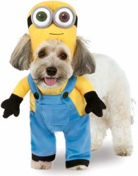 Minions pet transform costume