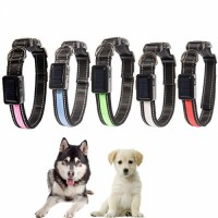 Amazon Hot Sale USB Rechargeable Glow In The Dark Lighted LED Dog Collar