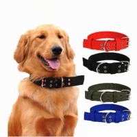 Wholesale Adjustable Comfortable Metal Buckle Foam Plain Nylon Dog Collar for Pet Dog Cat Puppies