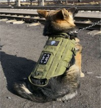 Tactical dog vest military training harness with handle outdoor pet supplies